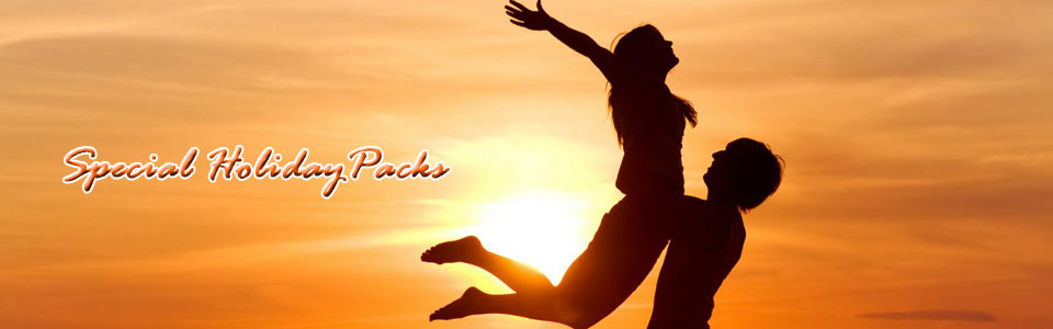 Honeymoon Tour Package: 15 Day / 14 Night in Kochi – Munnar – Thekkady – Kumarkom – Allappey – Kollam – Trivandrum